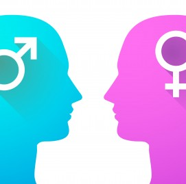 Illustration of an isolated head set with female and male signs