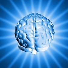 europeus querem construir cerebro virtual