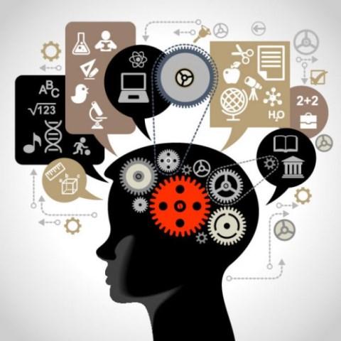 Cérebro em Foco reúne grandes nomes da neurociência no Rio - SUPERA - Ginástica para o Cérebro