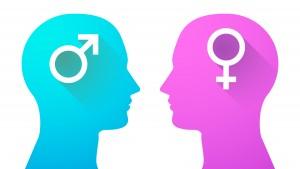 Diferença entre cérebros: masculino X feminino