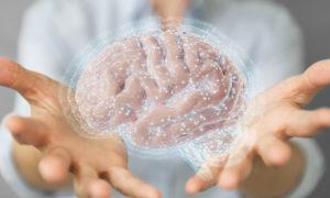 Exercícios físicos deixam cérebro mais inteligente e rápido - SUPERA - Ginástica para o Cérebro