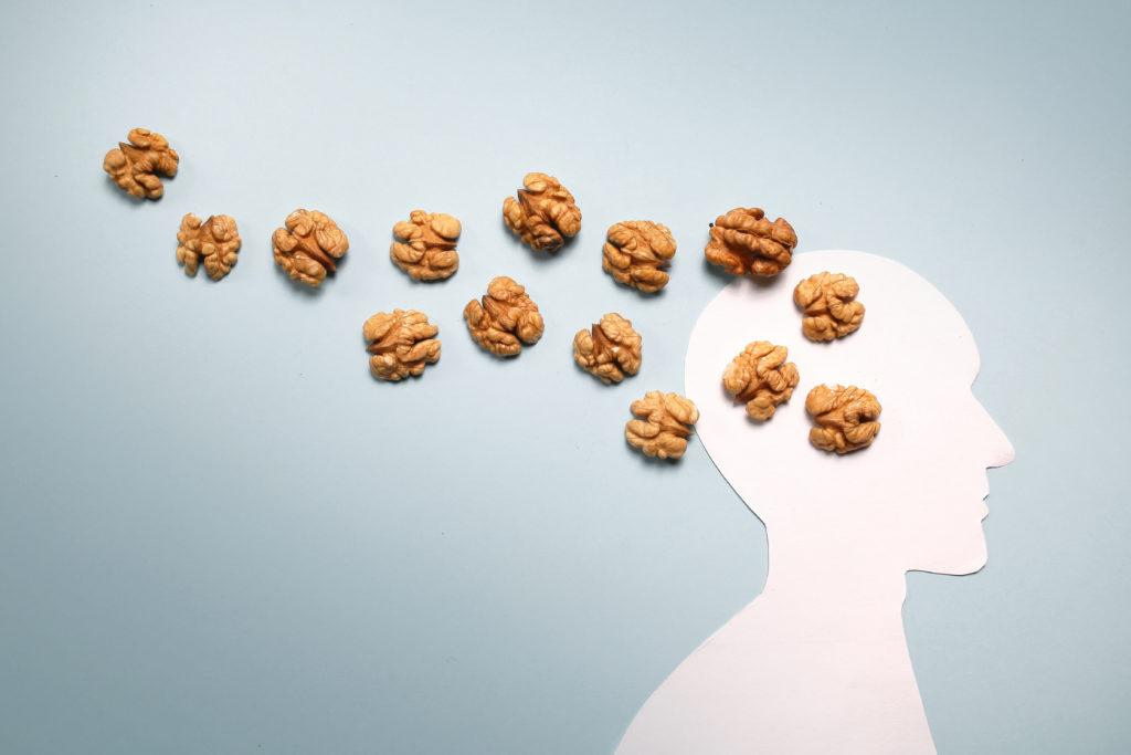 Alimentos para o cérebro: como melhorar o desempenho da memória - SUPERA - Ginástica para o Cérebro