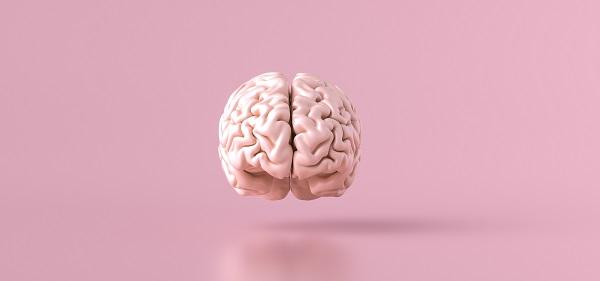 Quem pode fazer Ginástica para o cérebro? - SUPERA - Ginástica para o Cérebro